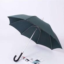 供应休闲伞供应商图片