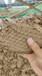 伊犁泥漿凈化凈化鑄鐵壓濾機