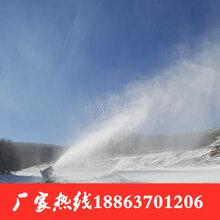 醒时同交欢国产造雪机人工造雪机制雪设备图片