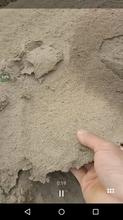生態固沙劑圖片