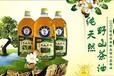 貴陽野生茶油報價