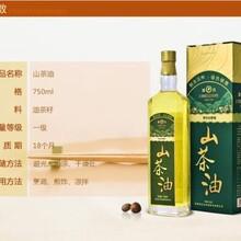 六盤水野生茶油經銷商圖片