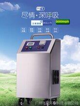 臭氧发生器空气源5G-500G食品厂化妆品厂净化车间图片