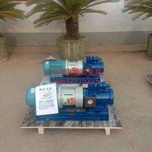 3G三螺桿泵油泵磁聯三螺桿泵圖片