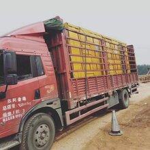 南京1800kw发电机出租租赁公司图片