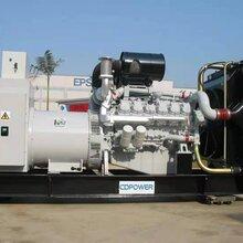 供電)臺州普通型發電機出租24小時在線圖片