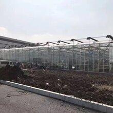 浙江玻璃温室厂家报价-玻璃温室一亩造价多少钱