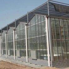 河北玻璃温室骨架加工厂玻璃温室20年质保优势