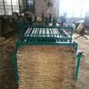 电动芦苇草帘机草帘编织机冬季保温用电动草帘机
