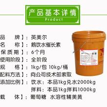 鹅催肥配方-育肥鹅饲料配方图片