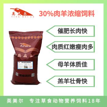 肉牛養殖技術方案-肉牛飼料