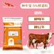 英美爾種母牛飼料,繁殖母牛飼料哺乳母牛飼料