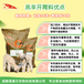 英美爾羔羊開口料,羔羊顆粒飼料羔羊飼料精料養殖服務