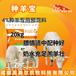 繁殖母羊飼料哺乳母羊飼料營養足