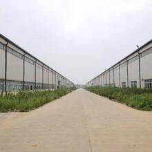 四川从事鲁忠二手钢结构设计图片