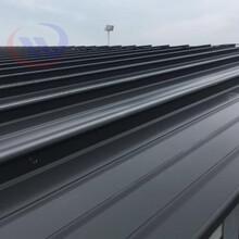 信州430型鋁鎂錳板圖片
