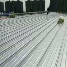 樟樹500型鋁鎂錳板圖片