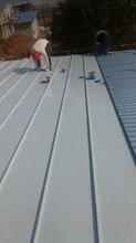 高安氟碳漆聚酯漆铝镁锰板