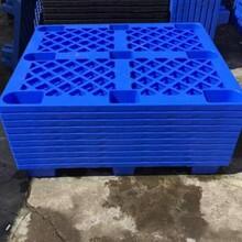 茶山专业制造塑胶卡板厂家报价塑胶托盘图片