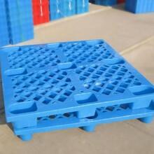 东城专业生产塑胶卡板加工报价塑胶托盘塑胶卡板图片