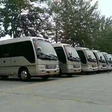惠东县专业从事旅游包车优质服务旅游租车图片