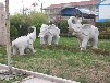 贵州石雕动物雕像哪里有