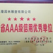 榮譽證書圖片