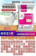 育肥羊预防结石饲料
