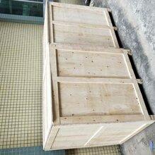 深圳包装木箱出售现货供应胶合板木箱图片