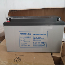 理士蓄电池12V60AH电力太阳能UPS电源铁路LEOCH电池DJM1260现货
