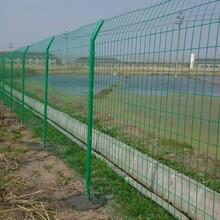 廣東佛山,防護電焊網,熱鍍鋅鋼格板,桃型柱圍欄網,金欄網欄張女士圖片