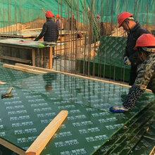 蒋峪镇潍坊荣雅木业有限公司这个项目图片