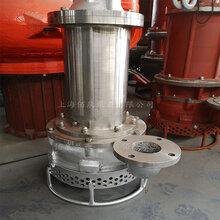 供應佰泉泵業BJQ不銹鋼排砂泵耐腐蝕濃漿泵電動礦漿泵真威武圖片