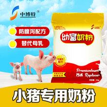 直销仔猪代乳奶粉新生仔猪奶粉图片
