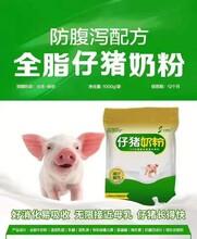 小豬奶粉廠家圖片