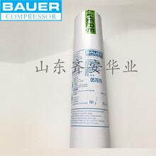 BAUER宝华吸油滤芯充气泵用活性炭过滤滤芯057679图片