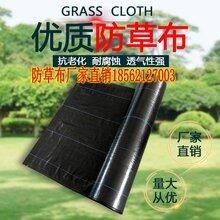 果园防草布用什么颜色好/大棚作物栽培呢、/厂家定做直销