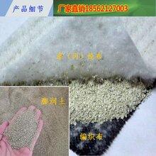 防水毯新国标适用于铁遂道人工湖垃圾填埋场水利建筑防渗