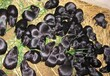 華豚生態農業黑豚養殖合作養殖
