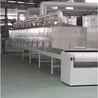 红枣微波干燥设备