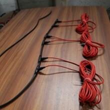 成都硅膠碳纖維發熱電纜廠家批發廠家直銷圖片