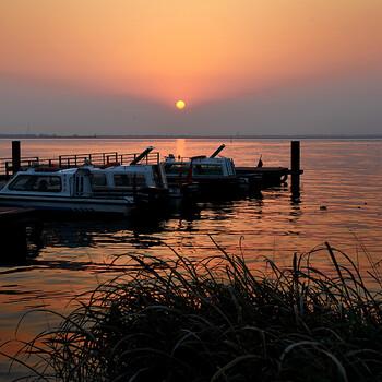 阳澄湖优质大闸蟹