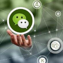 浏阳微信公众号开发需要注意的事情_浏阳智联科技