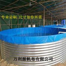 按需定做养殖帆布水池-厂家直销镀锌板帆布鱼池