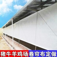 保暖防寒養豬篷布養雞場卷簾布-養殖場卷簾布加工按尺寸定做圖片