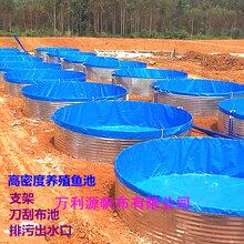 生产镀锌板帆布鱼池厂家-帆布养鱼池型号-批发帆布水池价格