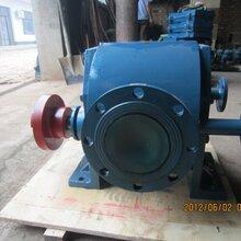 金海泵业直销WQCB不绣钢齿轮泵面酱蜂蜜泵