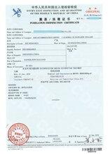 广东省珠三角上门熏蒸/木制品木包装熏蒸/熏蒸证书/消毒证