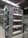 江西自動化養殖蛋雞設備生產廠家推薦田瑞牧業