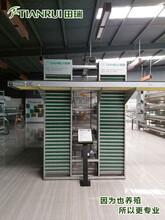 陜西自動化養殖蛋雞設備廠家直銷田瑞牧業圖片